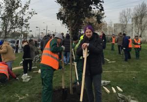 В работах по высадке деревьев и кустарников на Каширском шоссе принял участие председатель молодежной палаты (МП) района Нагатино-Садовники Борис Поткин