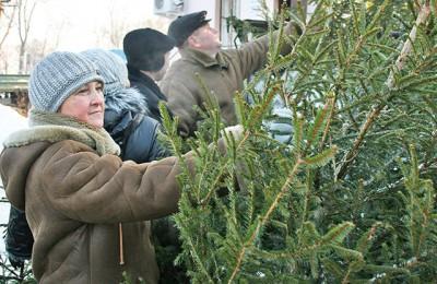 Два елочных базара откроются в канун зимних праздников в районе Нагатино-Садовники