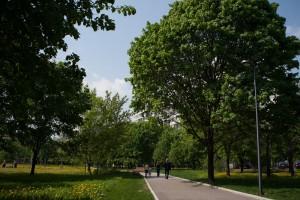 На фото парк на проспекте Андропова