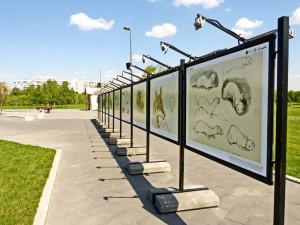 В местном парке можно увидеть работы художника-анималиста Владимира Смирина