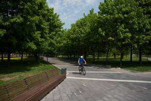 На фото велосипедист в местном парке