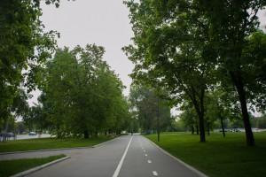 На фото велосипедная дорожка в одном из парков ЮАО