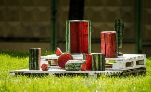 На фото макеты арбузов причудливой формы