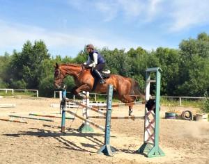 Всадники продемонстрируют элементы военно-прикладных видов конного спорта