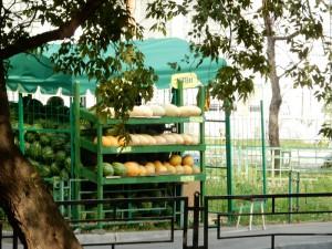 3 августа в Москве официально откроется бахчевой сезон