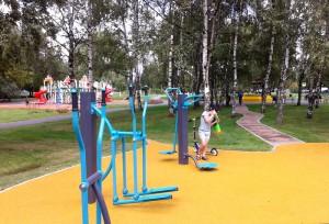 На переднем плане спортивная площадка, вдалеке игровой комплекс для детей