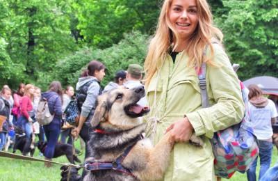Гости смогут познакомиться и пообщаться с собаками, оценить свои возможности в качестве потенциального хозяина питомца