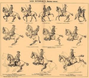 Схема упражнений выездки XX века
