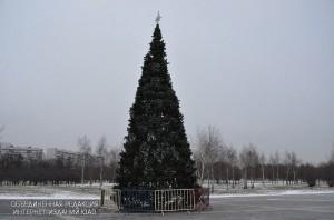 Елка в парке Нагатино-Садовников