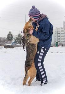 Волонтер с собакой из приюта