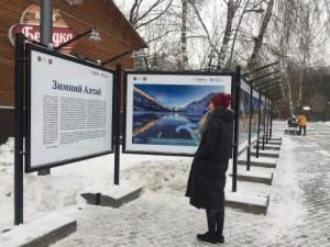 ВыставкаОстров Врангеля: жизнь на краю земли