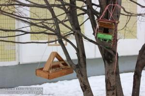 Кормушки для птиц в ЮАО