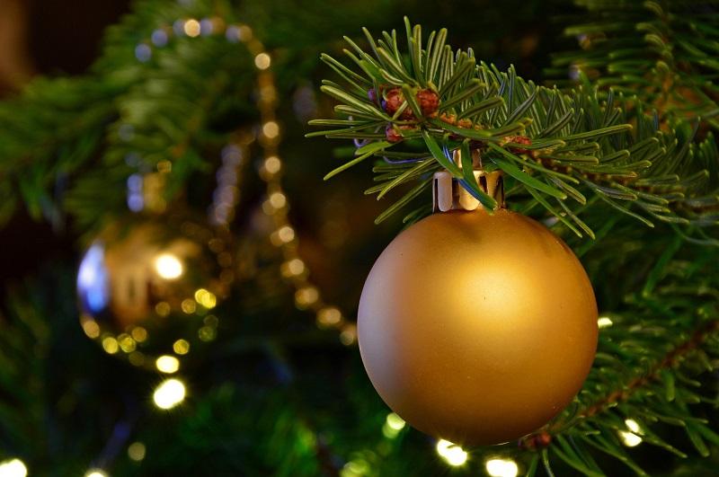 елочный базар, ель, Новый год, пихта, сосна, управа