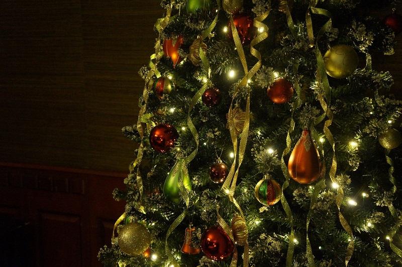 Новый год, парк Садовники, рождество